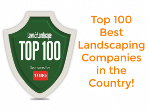 Lawn Lanscape Top 100