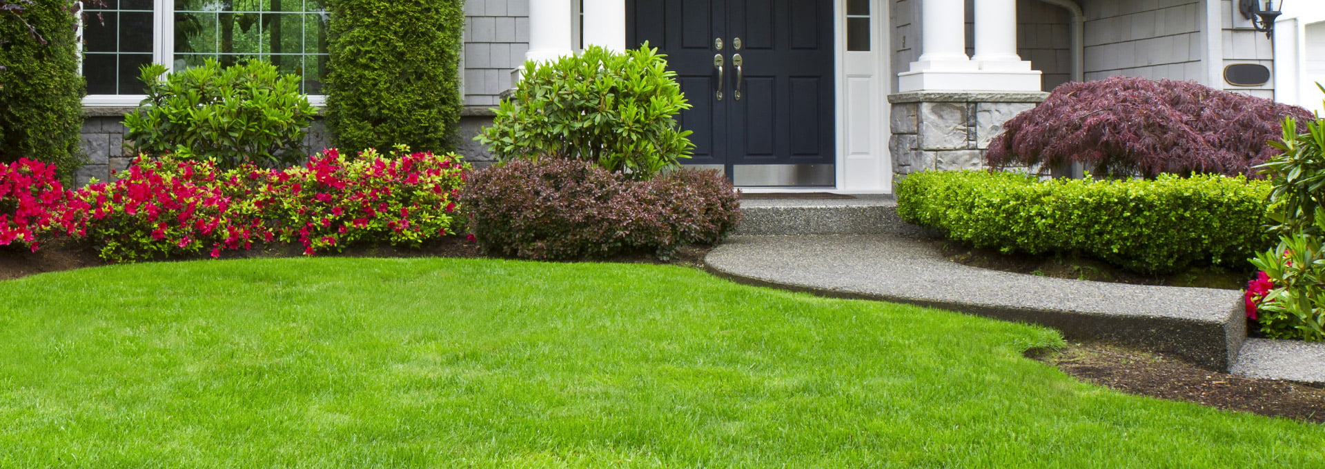 NJ Lawn and Plant Care from High Tech Landscapes