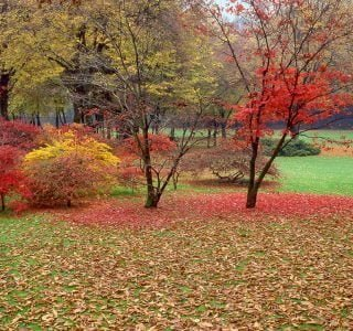 Tips And Ideas For Nj Landscaping Projects High Tech
