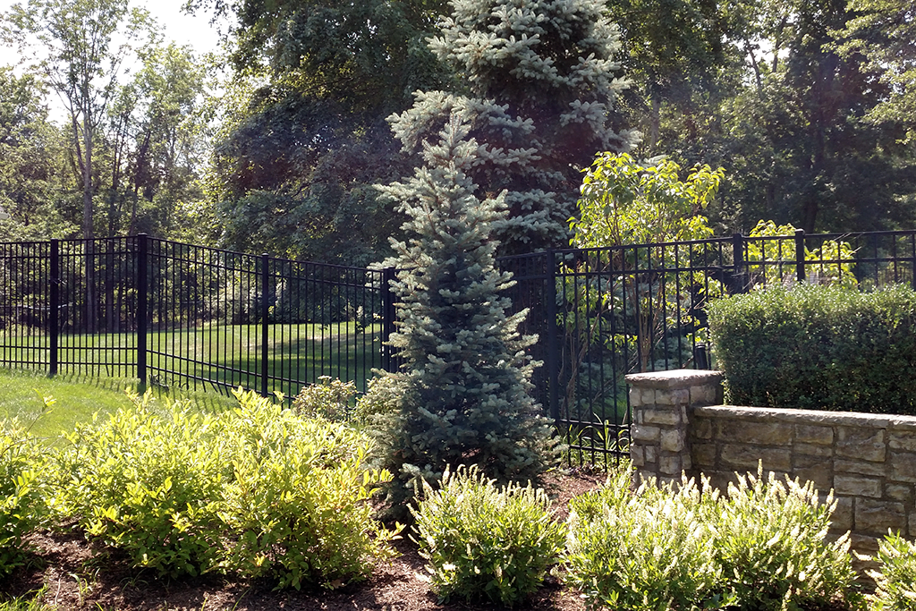 Landscape Design and Lawn Care: Praise from Bridgewater, NJ