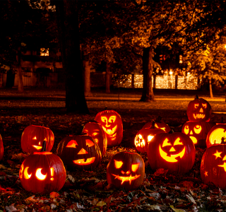 5 Fun Halloween Landscaping Themes