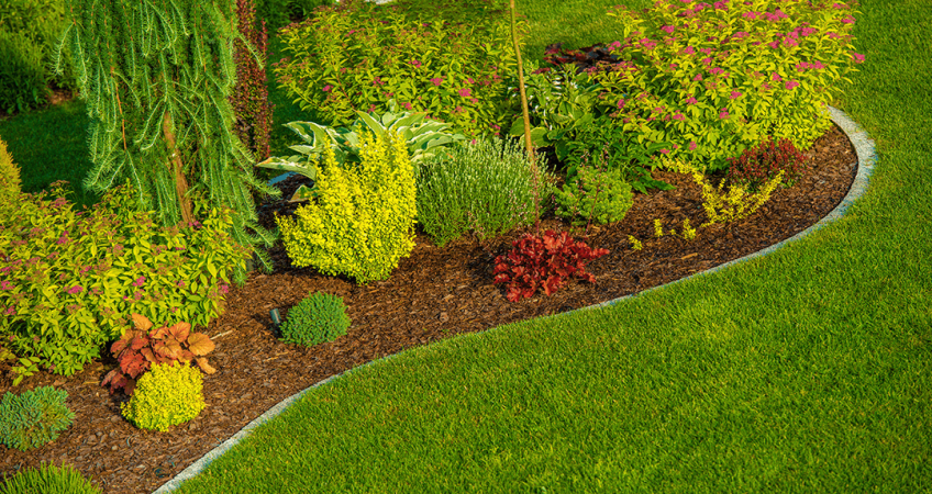 Best in the Landscaping Business