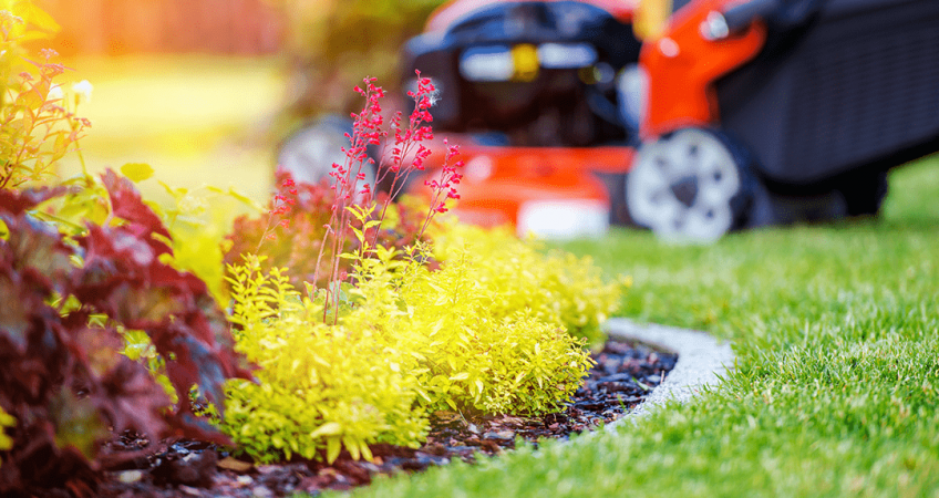 Bring Back the Beauty in Your Landscaping This Fall