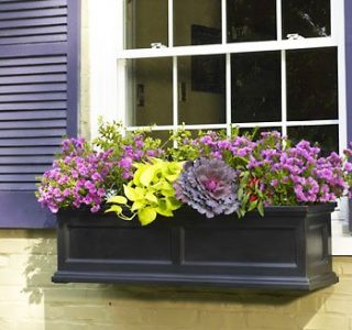 Madison FlowerBox Glamour