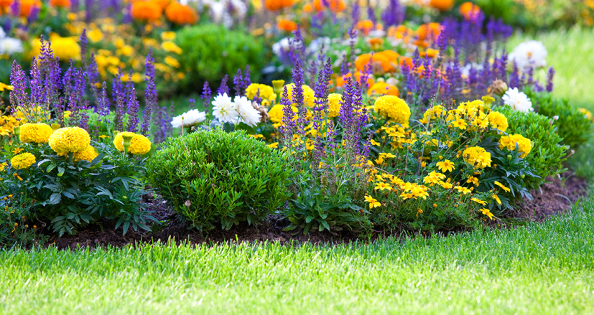 Plan Your Spring Landscaping